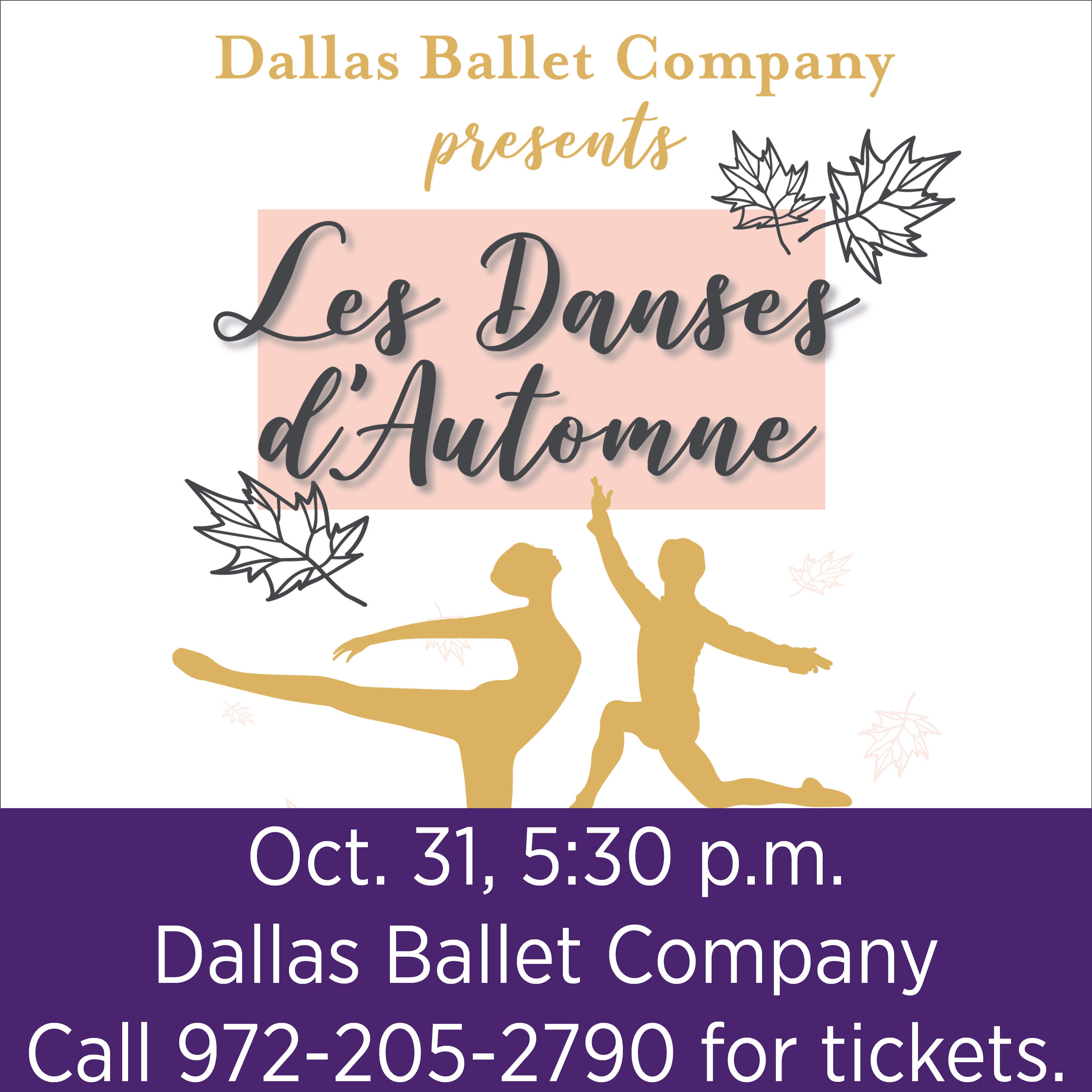Dallas Ballet Company